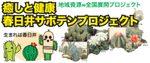 Cactus_top